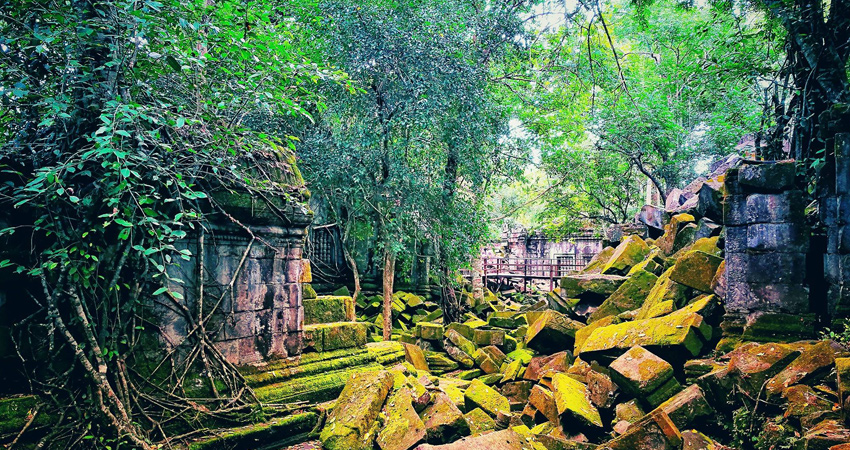 Beng Mealea Temple Tours