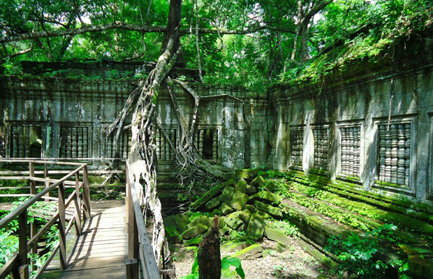 Jungle's temples tour 1Day